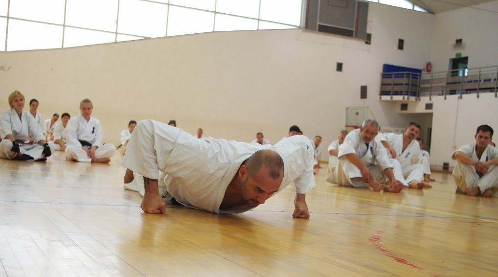 Боевое искусство укрепление суставов боль в суставах по синельникову